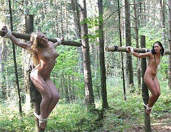 【※胸糞注意】奴隷市場で買われた女性の管理方法 in 野外(※画像21枚)